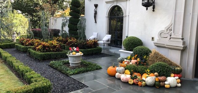 Make this fall festive with colorful pumpkins, fall flowers and other seasonal décor.